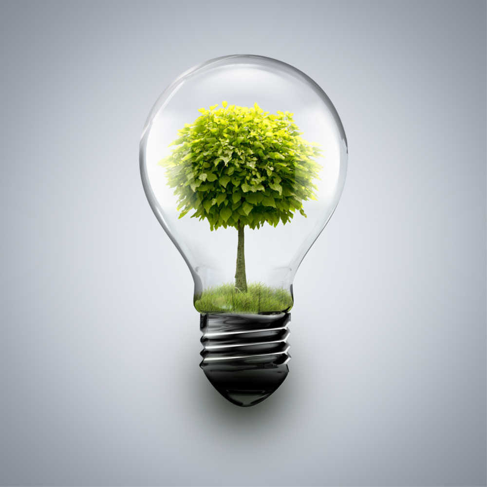 Save money by switching off the bulbs